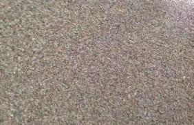 果岭草草坪种子简单又实用的种植管