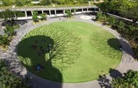 一块草坪怎么样美化整个景观空间